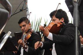 Enzastiga Orquesta Live