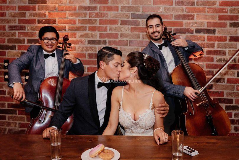 Rojan Dos Cellos