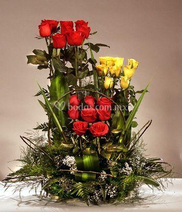 Rosas de todos los colores