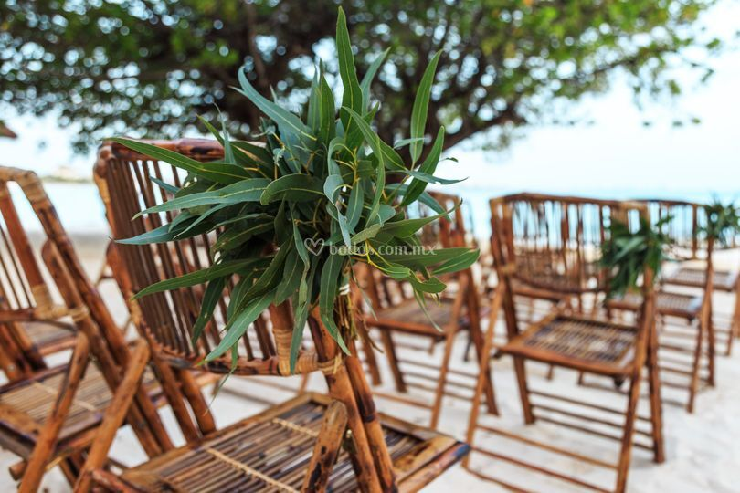 Sillas bamboo