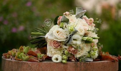 Encanto Floral 1