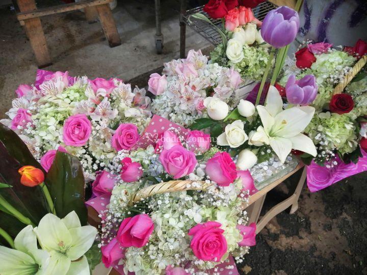 Con Flores Basta