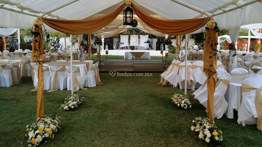 Sus bodas de oro
