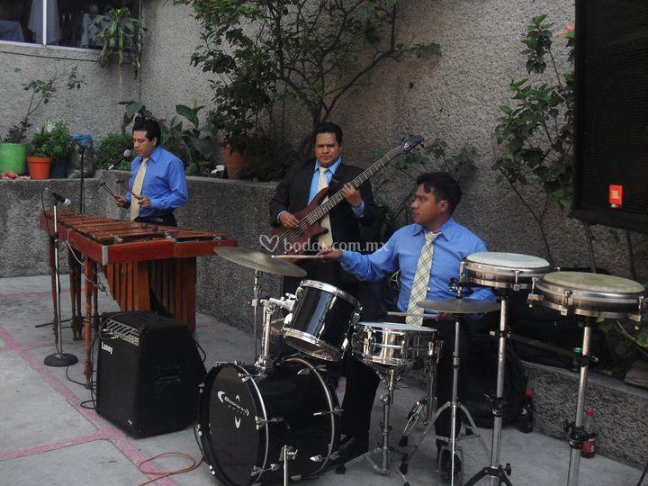 Marimba 3 elementos
