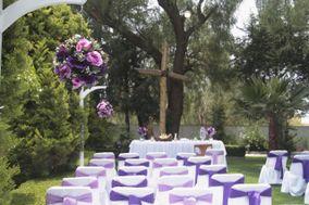 Jardín Del Bosque