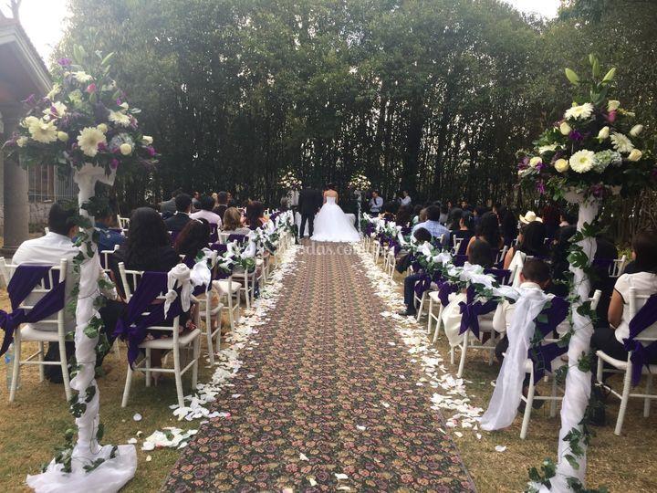 Elegantes Ceremonias