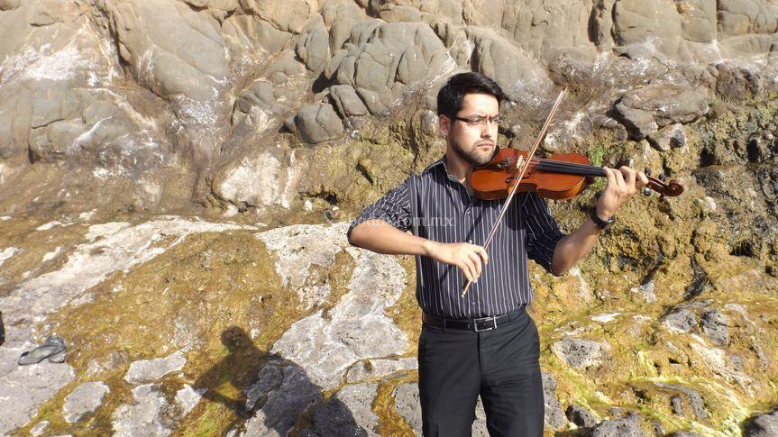 Mas de violín