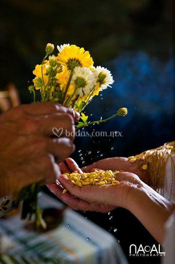 Ceremonia de boda eventos luz