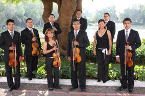Varespi Violines