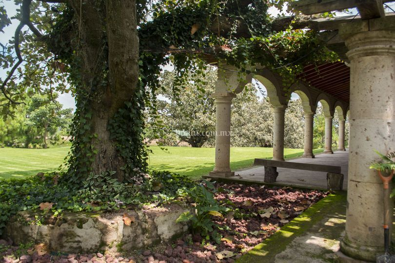 Jardín y hacienda