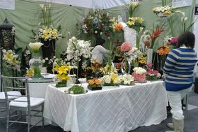 Romance Floral Eventos