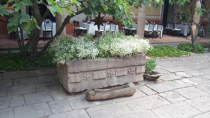 Pila del patio
