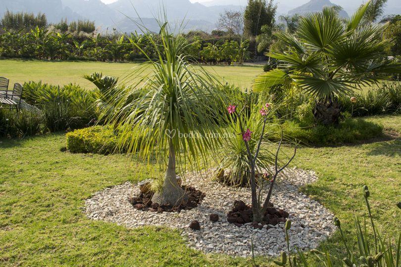 Oxpango finca campestre for Jardines rusticos campestres