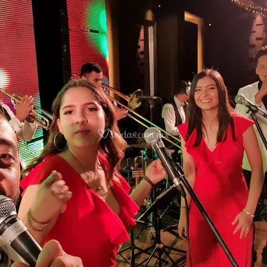 Alfil Musical