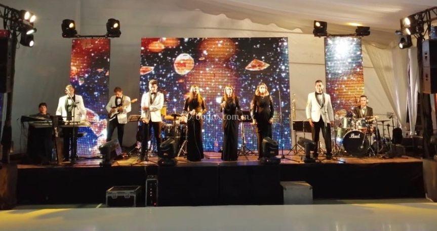 Alfil musical 10 Int.
