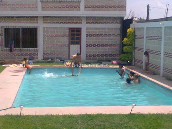 Jard n dumai for Jardin villa xavier