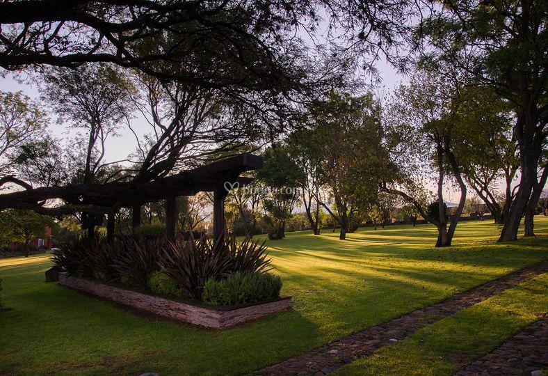 Jardín pergolas hls