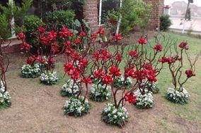 Arreglos Florales Yuyo