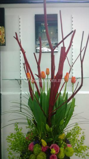 Ramal tulipan