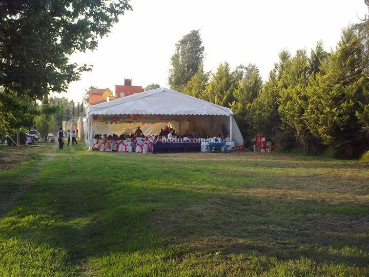 Jard n san buenaventura for Jardin xochimilco