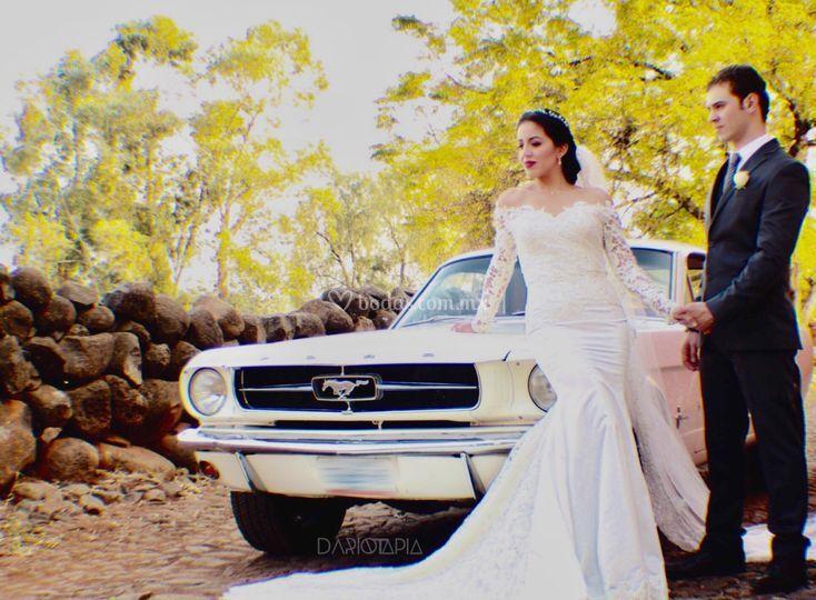 Mustang 1965 - Darío Tapia
