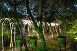 T�nel iluminado de El Claustro Eventos