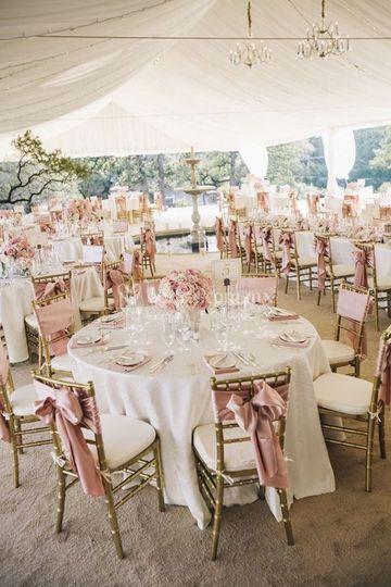 En rosa con blanco