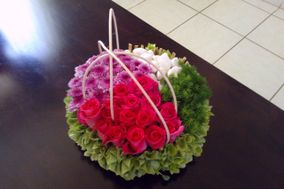 Zantedeschia Diseño Floral