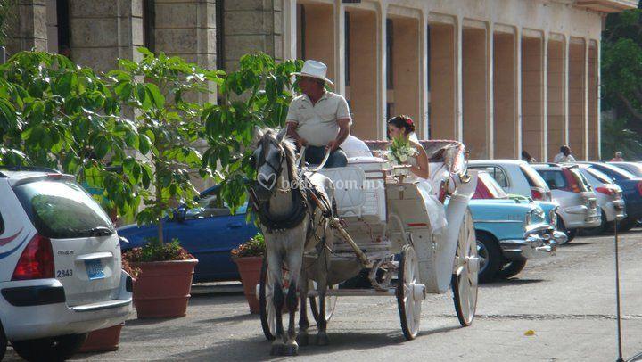 Cuba es amor