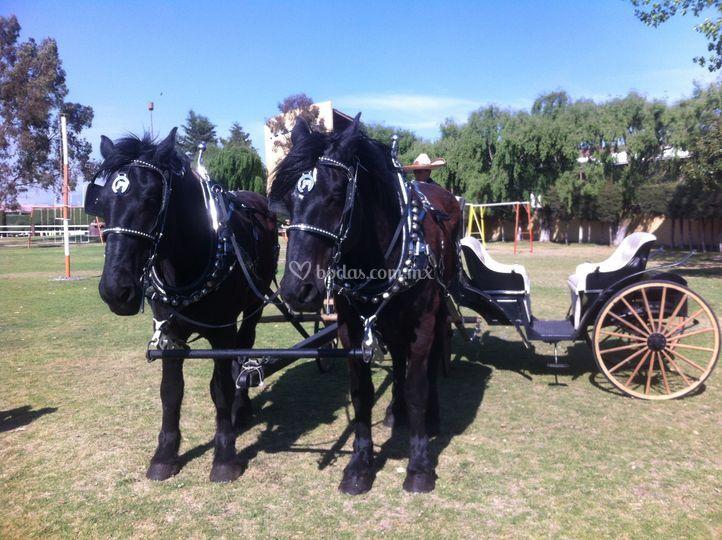 Carreta con caballos