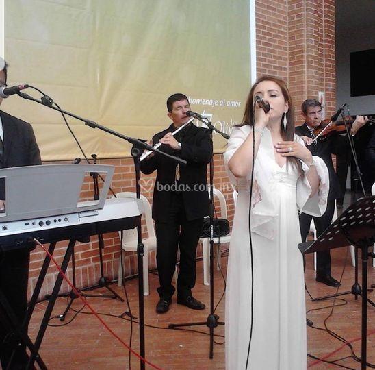Cantante, representante