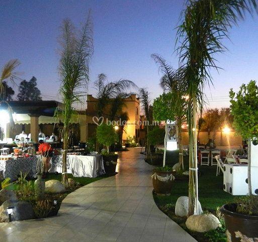 Jard n las palmas for Jardin quinta montebello mexicali