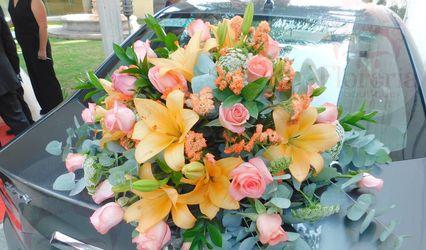 Florería Boutique