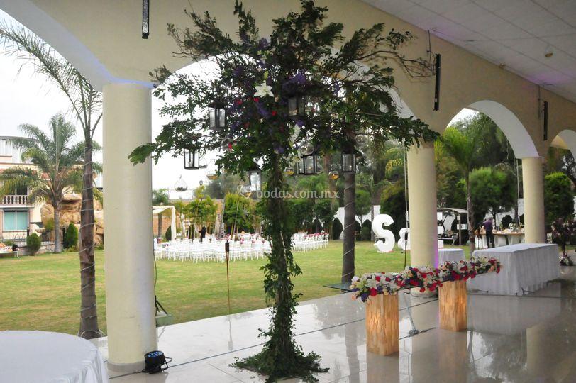 Jardín Edén