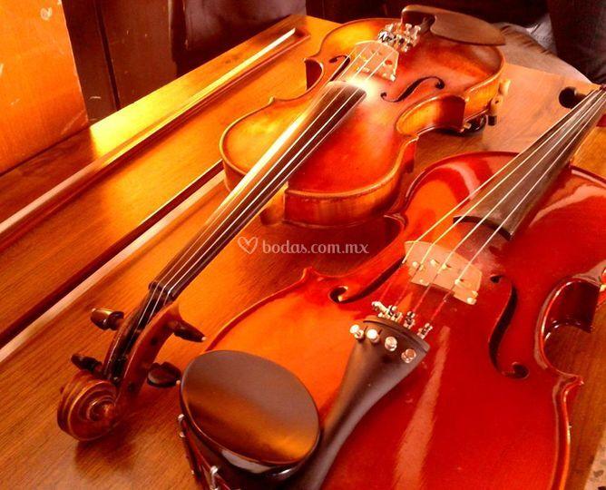 Música con violín