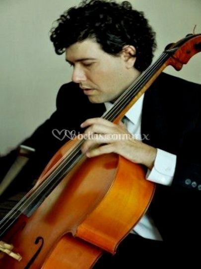 Gunther Frettlohr violoncello