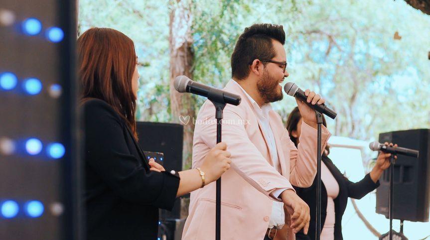 FZ Singers