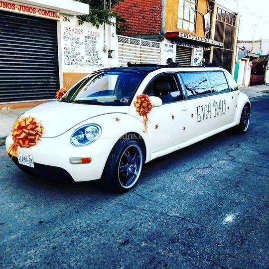 New beetle para 8 personas