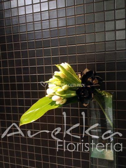 Ambientación Orquídeas Negras