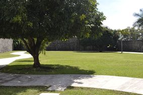 Jardín Las Mandarinas