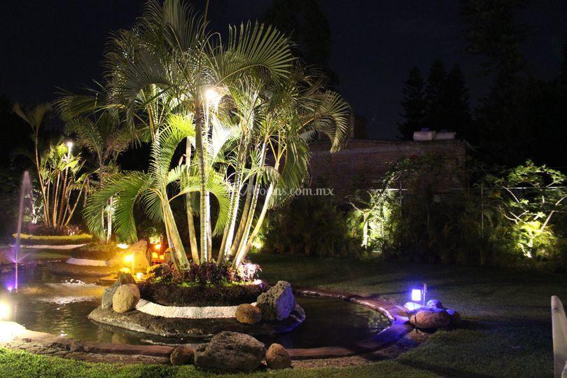 Lagos de jard n real quinta b hos foto 22 for Jardin quinta real