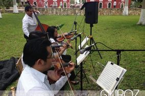 Quiroz Agencia Musical