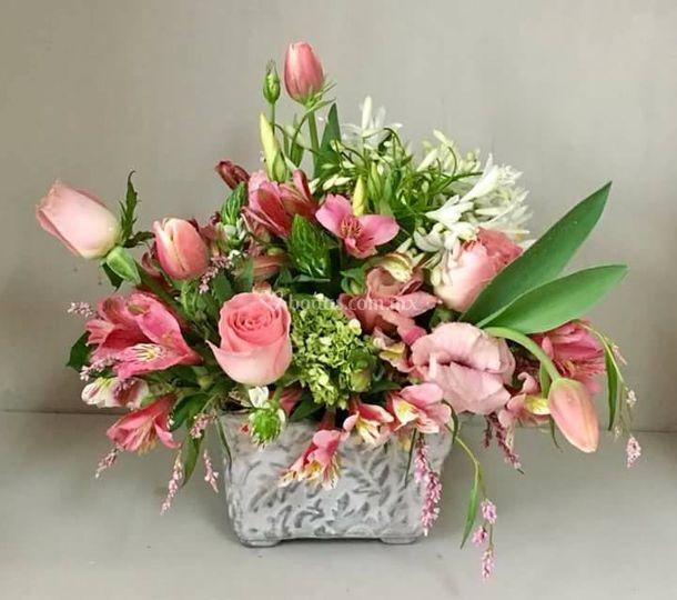 Boutique Floral Loreto