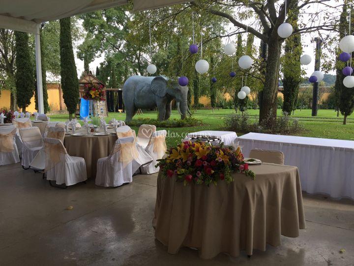 Jardín Elefante