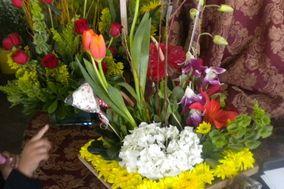 Florería Iris