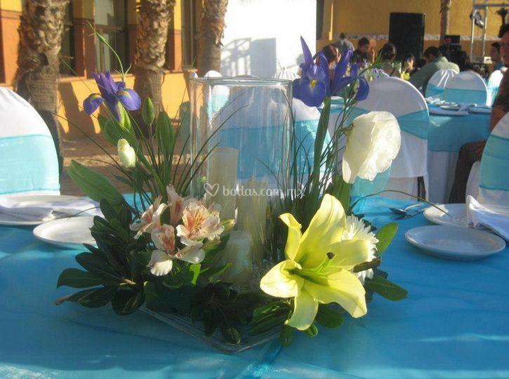 Arte Floral Blooming