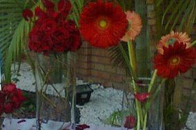 Floreria Rossy Quintas