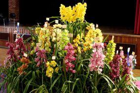 Flores únicas