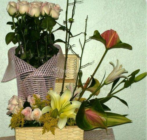 Florería Detalles y Caprichos
