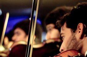 Violines Strauss